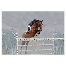 Equestrian Show Jumper Wall Art