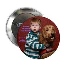 "Noah Button 2.25"" Button (10 pack)"