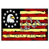 """Revolutionary Flag: Join or Die"" Poster"