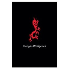 Dragon Whisperer Wall Art