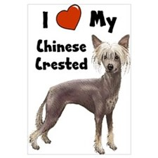 I Love My Chinese Crested Wall Art