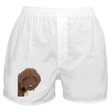 Chocolate Labradoodle 2 Boxer Shorts