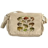 Frogs of North America Messenger Bag