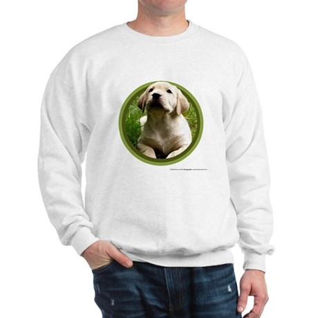 Yellow Lab Puppy Sweatshirt