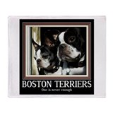 Double Boston Throw Blanket