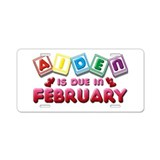 Aiden is Due in February Aluminum License Plate