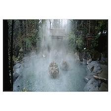 High angle view of a natural hot spring pond, Saga
