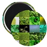 "Green Photography Collage 2.25"" Magnet (10 pack)"