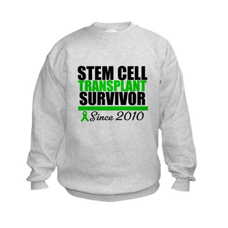 SCT Survivor 2010 Kids Sweatshirt