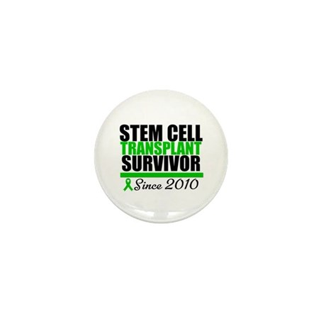 SCT Survivor 2010 Mini Button