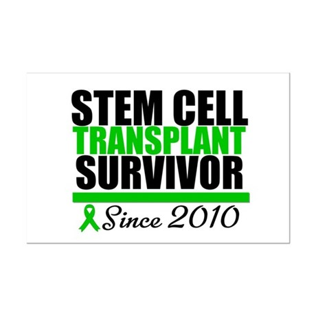 SCT Survivor 2010 Mini Poster Print