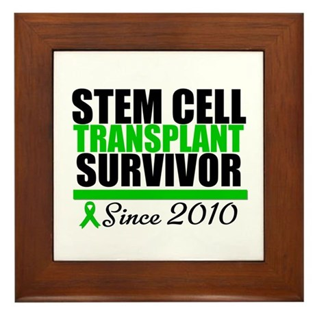 SCT Survivor 2010 Framed Tile