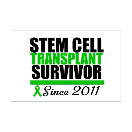 SCT Survivor 2011 Mini Poster Print