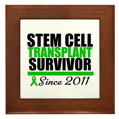 SCT Survivor 2011 Framed Tile