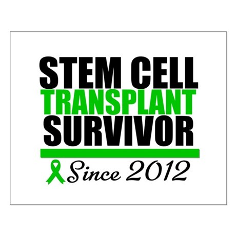 SCT Survivor 2012 Small Poster