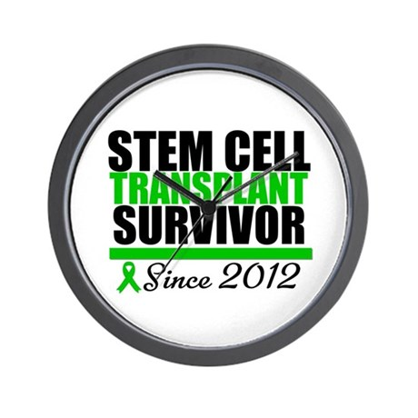 SCT Survivor 2012 Wall Clock