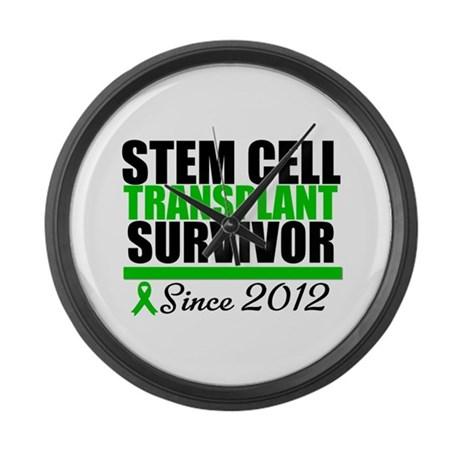 SCT Survivor 2012 Large Wall Clock