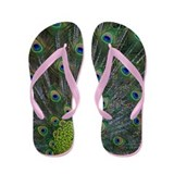 Peacock Flip Flops