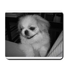 Cute Peke Mousepad