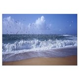 Waves breaking on the coast, Morbihan, Brittany, F