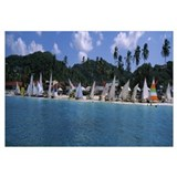 Sailboats on the beach, Grenada Sailing Festival,
