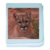 Mountain Lion 1 baby blanket