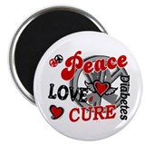 "Peace Love Cure 2 Diabetes 2.25"" Magnet (10 pack)"