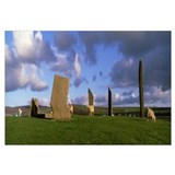 Sheep, Stones Of Stenness, Orkney Islands, Scotlan