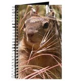 Squirrel Journal