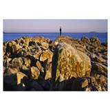 Silhouette of a man standing on a rock, Acadia Nat