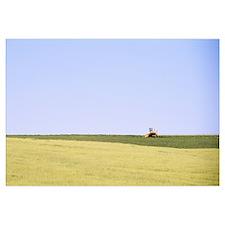 Crop in a field, Imbler, Oregon