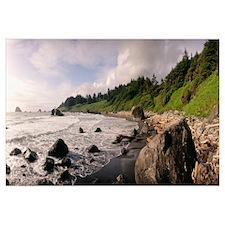 Rocks at the coast, California