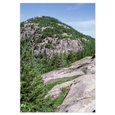 Maine, Acadia National Park, Bubble Rock, Trees on