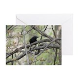 Funny Black crow Greeting Card