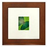 Cute Creative and fine arts Framed Tile