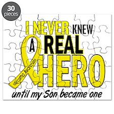 Real Hero Sarcoma Puzzle