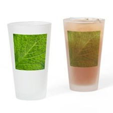 Green leaf Drinking Glass