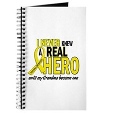 Real Hero Sarcoma Journal