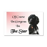 The Star Car Magnet 20 x 12