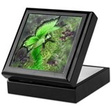 Absinthe Fairy Keepsake Box