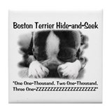 Boston Hide and Seek Tile Coaster