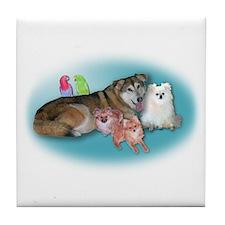Mike & Trish's Family Tile Coaster