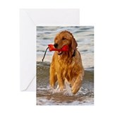 Golden Retriever 9 Greeting Card