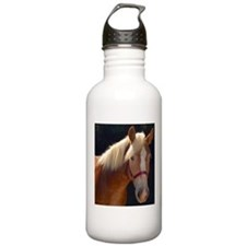 Sunlit Horse Water Bottle