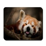 Mousepad Red Panda