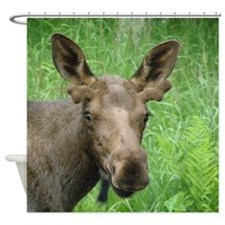 Bull Moose #03 Shower Curtain