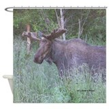 Bull Moose #04 Shower Curtain