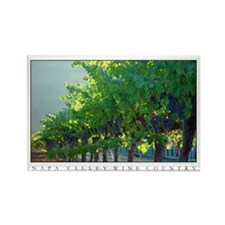 California Wine Country Grapes + Vineyard Magnets