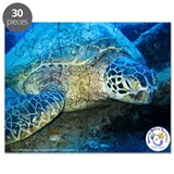 Unique Turtle photography Puzzle