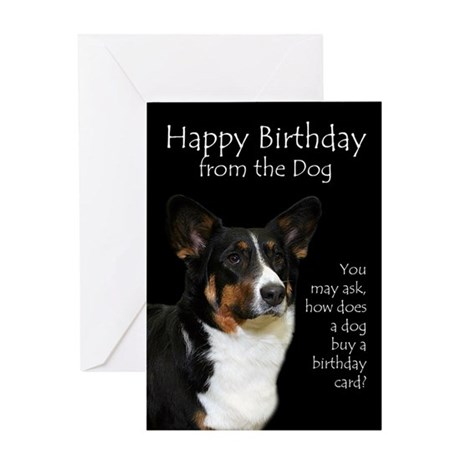 gallery for gt funny animal birthday cards
